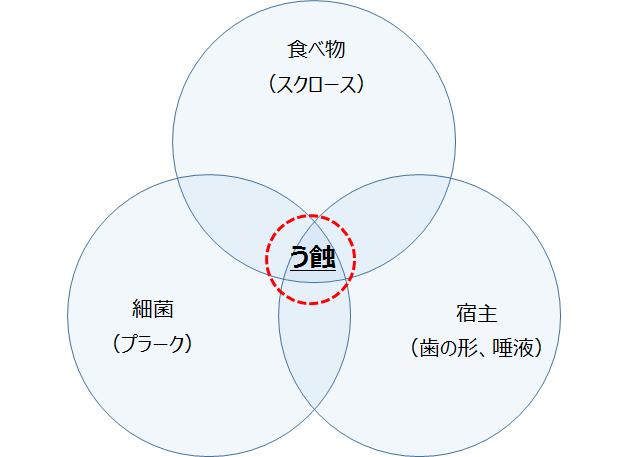 カイスの三つの輪